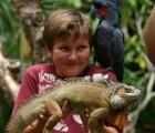 foto bali zoo park 140x120 Bali Zoo Park