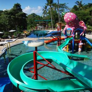 Perbedaan Bali Safari Bali Zoo Dan Bali Bird Park
