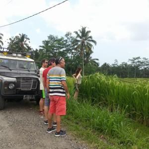 Land_Rover2